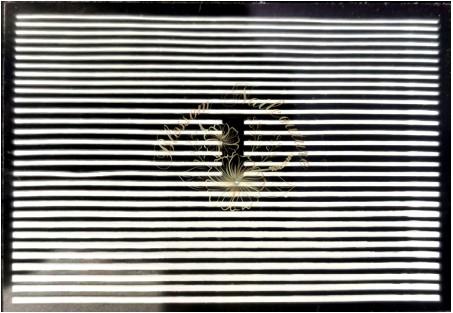 Flexible Stripes Small Edition White