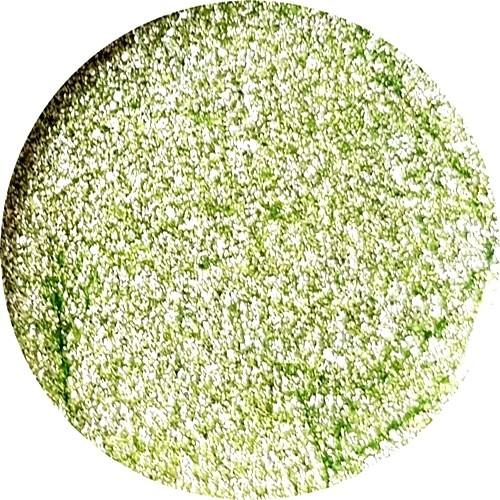 Glitter Gel Queens Green 5ml