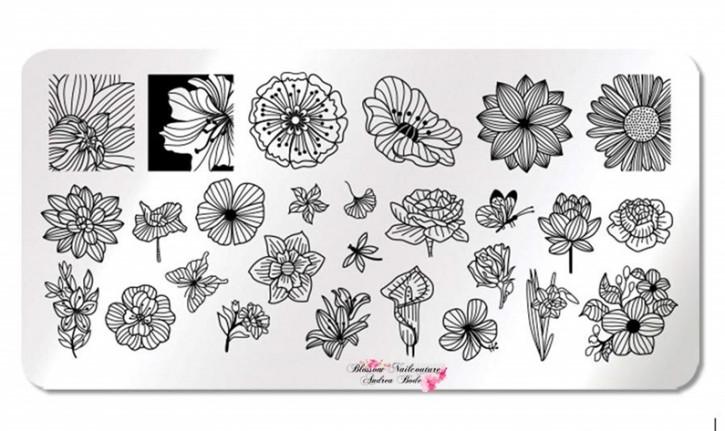Stamping Plate Art Flowers & Leaves