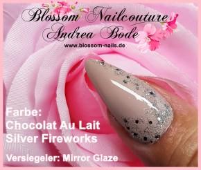 Silver Fireworks 5ml