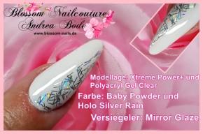 Holo Silver Rain 5ml